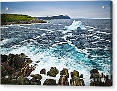 Melting Iceberg In Newfoundland Acrylic Print by Elena Elisseeva