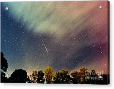 Meteor Perseid Meteor Shower Acrylic Print by Thomas R Fletcher