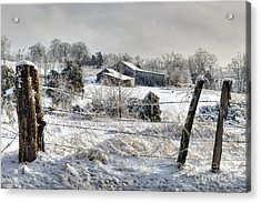 Midwestern Ice Storm - D004825 Acrylic Print by Daniel Dempster