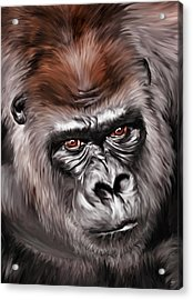 Mighty Joe Acrylic Print by Julie L Hoddinott