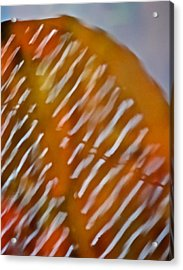 Mirage Acrylic Print by Odd Jeppesen