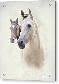 Misty Acrylic Print by Betty LaRue