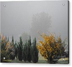 Misty Fall Day Acrylic Print by Lorraine Louwerse