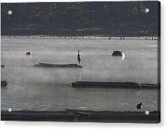 Misty Morning At Lake Wilhelmina Acrylic Print by Douglas Barnard