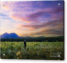 Monet Morning Acrylic Print by Arne Hansen