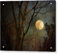 Moonrise Acrylic Print by Jai Johnson
