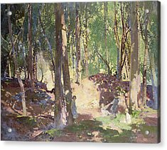Morning In The Woods Acrylic Print by Harry Watson