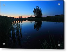 Morning Pond In Blue Acrylic Print by Jiayin Ma