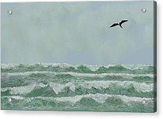Motion And Flight Acrylic Print by Tony Rodriguez