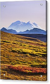 Mount Mckinley Denali National Park Photograph By Yves