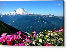 Mount Rainier Seen From Crystal Mountain Summit Acrylic Print by Tanya  Searcy