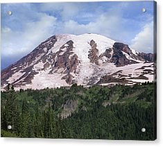 Mount Rainier With Coniferous Forest Acrylic Print by Tim Fitzharris