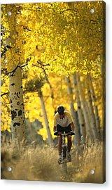 Mountain Biking Through A Grove Acrylic Print by Bill Hatcher