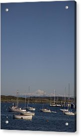Mt Baker Looms Over A Harbor Full Acrylic Print by Taylor S. Kennedy