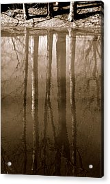 Muddy Waters Acrylic Print by Ed Smith
