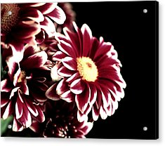 Mums In A Vase Acrylic Print by Cathie Tyler