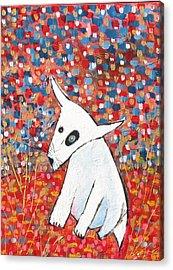 My Dog Blackie Acrylic Print by Maureen Rocksmoore