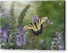 My Mothers Garden - D007041 Acrylic Print by Daniel Dempster