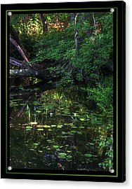 My Peace I Give You Acrylic Print by Matthew Green