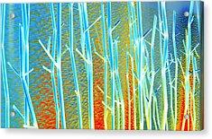 My Vegas Mandalay 8 Acrylic Print by Randall Weidner