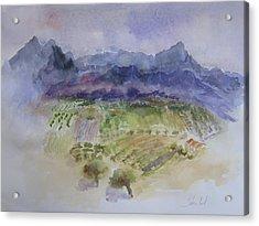 Napa Valley Ll Acrylic Print by Carolyn Zbavitel