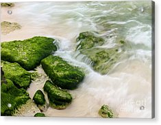 Natural Beauty Acrylic Print by Sophie Vigneault