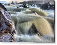 Natural Violence  Acrylic Print by JC Findley