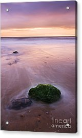 New Day Acrylic Print by Martin Williams