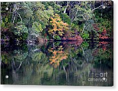New England Fall Reflection Acrylic Print by Carol Groenen