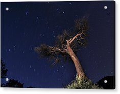 Night Photography With Traces Of Circumpolar Acrylic Print by Creative Images