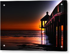 Nightshade Acrylic Print by Pixel Perfect by Michael Moore