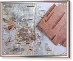 Normand's  Birch Bark  Acrylic Print by Danielle  Parent