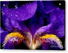 Not Your Average Iris Acrylic Print by Paul W Faust -  Impressions of Light