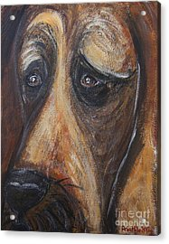 Nothin But A Hunddog Acrylic Print by Ania M Milo