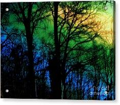 November Dream Acrylic Print by Anita Antonia Nowack