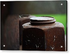 Nuts And Bolts Acrylic Print by Lisa Phillips