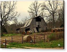 Oak Barn Acrylic Print by Marty Koch