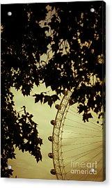 October Mist Acrylic Print by Jan Bickerton