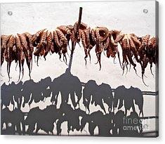 Octopus Drying Acrylic Print by Jane Rix