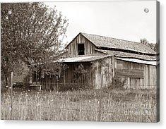 Old Barn In Sepia  Acrylic Print by Connie Fox