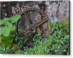 Old Gear Acrylic Print by Carol  Bradley