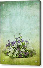 Old Grunge Paper Flowers Pattern Acrylic Print by Setsiri Silapasuwanchai