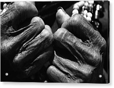 Old Hands 2 Acrylic Print by Skip Nall