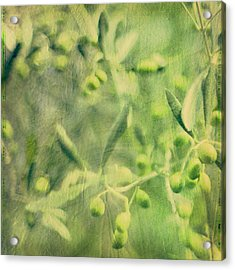 Olive And Leaf Acrylic Print by Linde Townsend