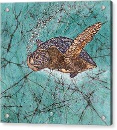 On A Mission Acrylic Print by Shari Carlson