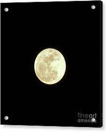 Only The Moon Acrylic Print by Elizabeth Hernandez