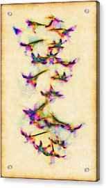 Orchids In Flight Acrylic Print by Judi Bagwell