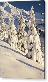 Oregon, United States Of America Snow Acrylic Print by Craig Tuttle