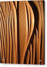 Organic Mahogany Shapes Acrylic Print by Charles Dancik