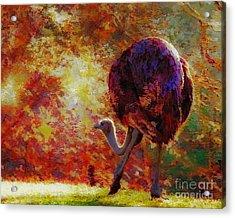 Ostrich II Acrylic Print by Arne Hansen